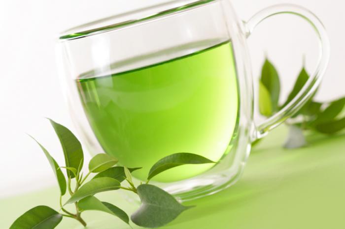 Herbata Ekologiczna Bio